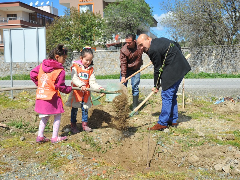 Forest Of Freedom Planted By Children