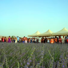 Sakin Şehirde Mis Kokulu Festival
