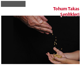TOHUM TAKAS ŞENLİKLERİ