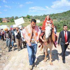 İzmir'in Erkence Zeytinine Taş Ocağı Hançeri!