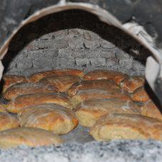 Sakin Şehir'de Ata Ekmeği ve Armola Şenliği Yapılacak