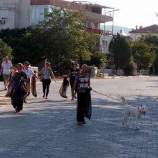 Seferihisar Belediyesi İklim İçin Ses Verdi