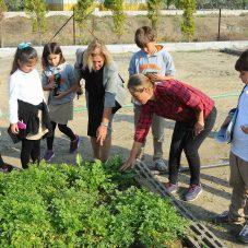 Seferihisar'da 4 Gün Tarım Şenliği
