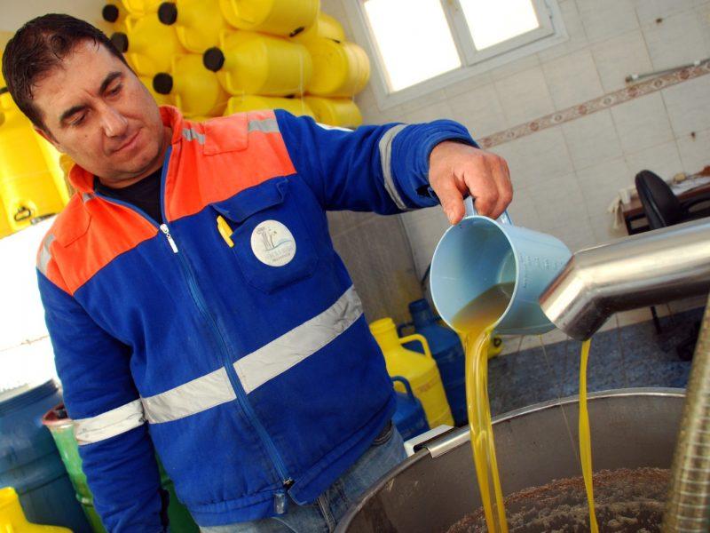 Seferihisar Belediyesi'nden her ay 2 litre zeytinyağı